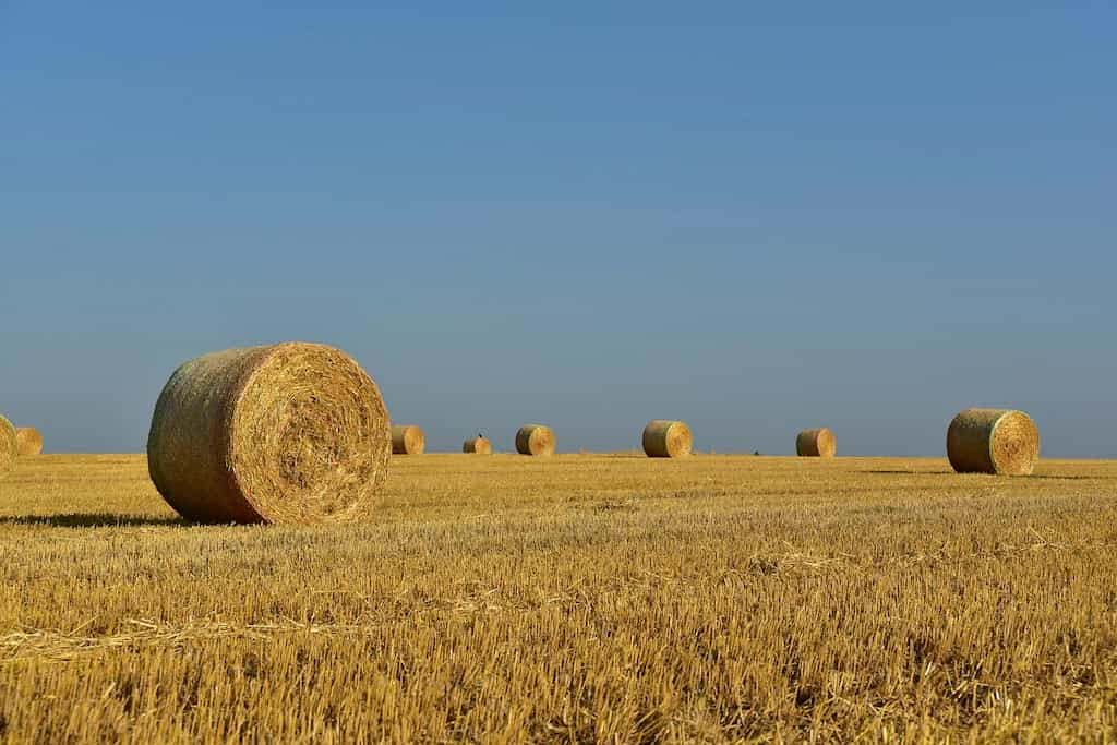 Права собственника на использование земельного участка.