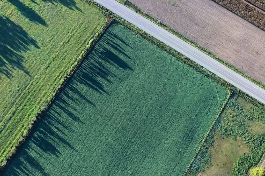 Вид разрешенного использования земельного участка.